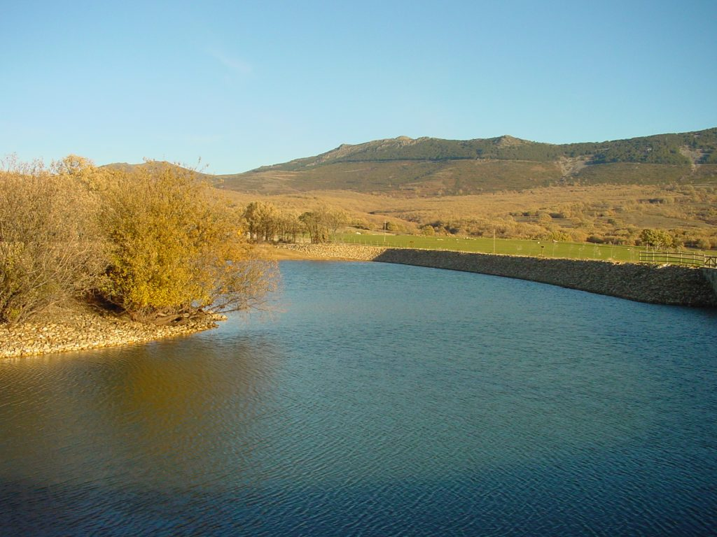 Laguna del Salmoral (Prádena del Rincón)
